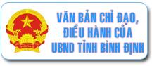 UBND Tỉnh Bình Định