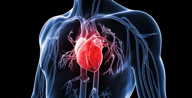 Lưu ý khi nhịp tim chậm